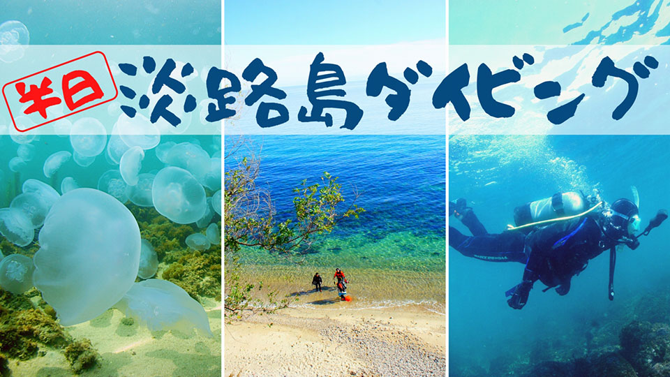 モアナリンク淡路島ダイビング